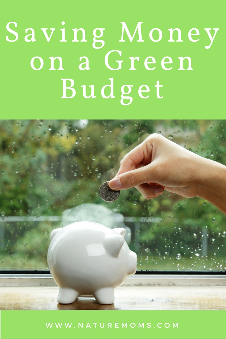 saving-money-on-a-green-budget