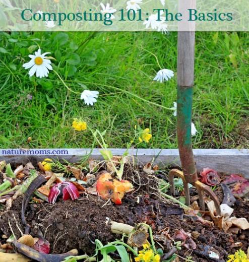 Composting 101 The Basics