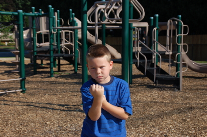 Playground Bulliy