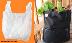 plastic versus cloth bags
