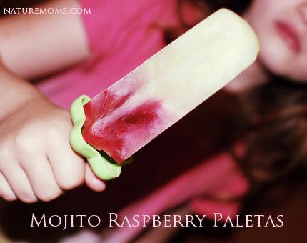 mojito raspberry paletas