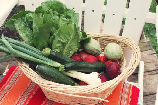 fresh farm foods