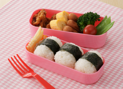 pink bento lunch box nature moms. Black Bedroom Furniture Sets. Home Design Ideas