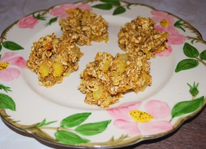nourishing breakfast cookies