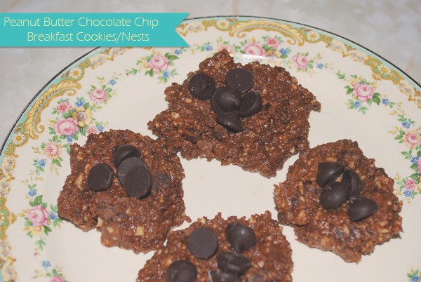 Peanut Butter Chocolate Chip Breakfast Cookies or Nests – No Bake!