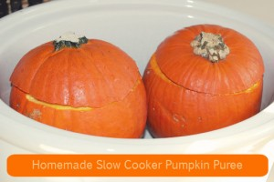Easy Slow Cooker Pumpkin Puree Recipe