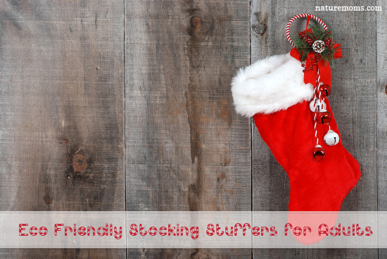Eco friendly stocking stuffer ideas for adults Unique stocking stuffers adults