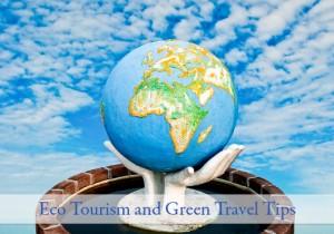 Eco Tourist