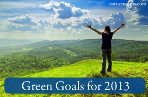 Green Goals and Resolutions for 2013