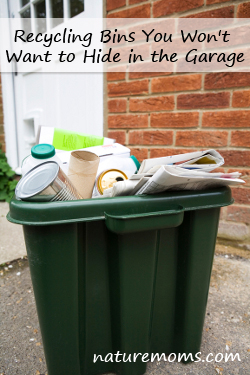 Recycling Bin Outside House