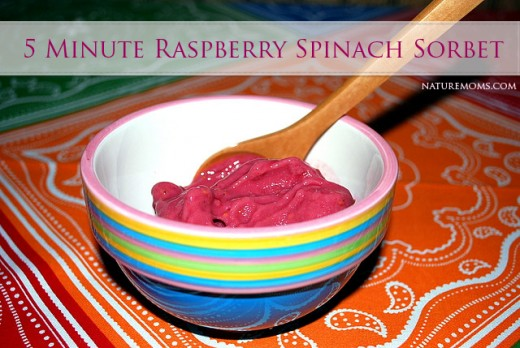 5 Minute Raspberry Spinach Sorbet