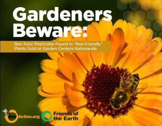 garden bees
