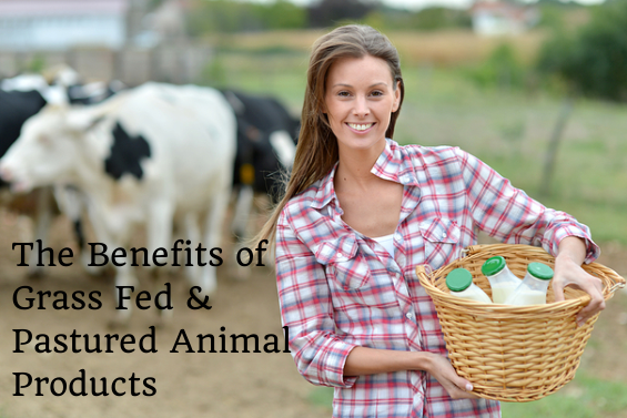The Benefits of Grass Fed and Pastured Animal Products
