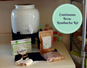 Continuous Brew Kombucha Kit