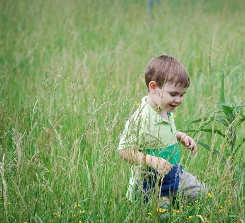 Young boy walking through grasslands meadow