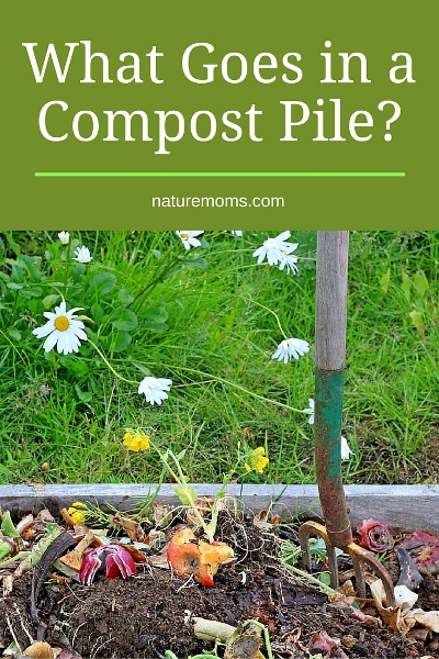 What Goes in a Compost Pile