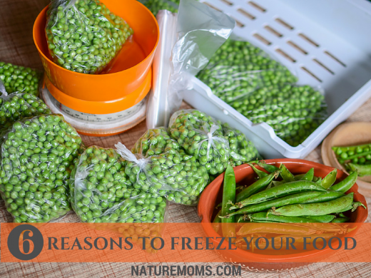 6 Reasons to Freeze Your Food