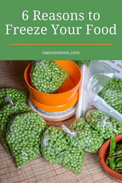 freeze your food
