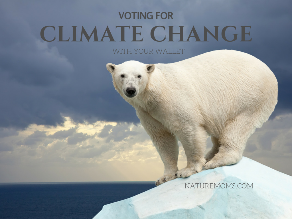 Voting for Climate Change With Your Wallet