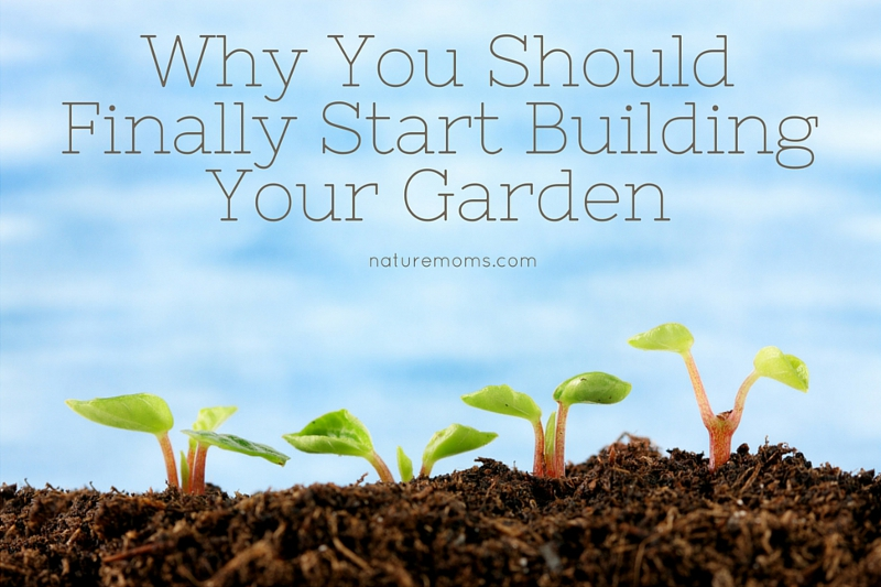 Why You Should Start A Garden