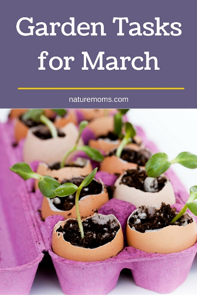 Garden Tasks for March