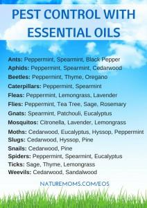 Pest Control Using Essential Oils