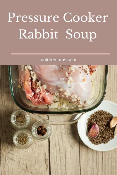 Instant Pot Rabbit Soup