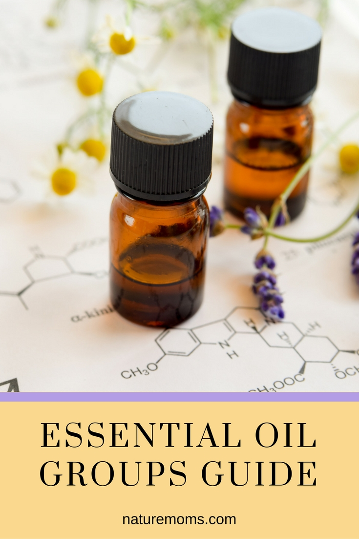 Essential Oil Groups Guide