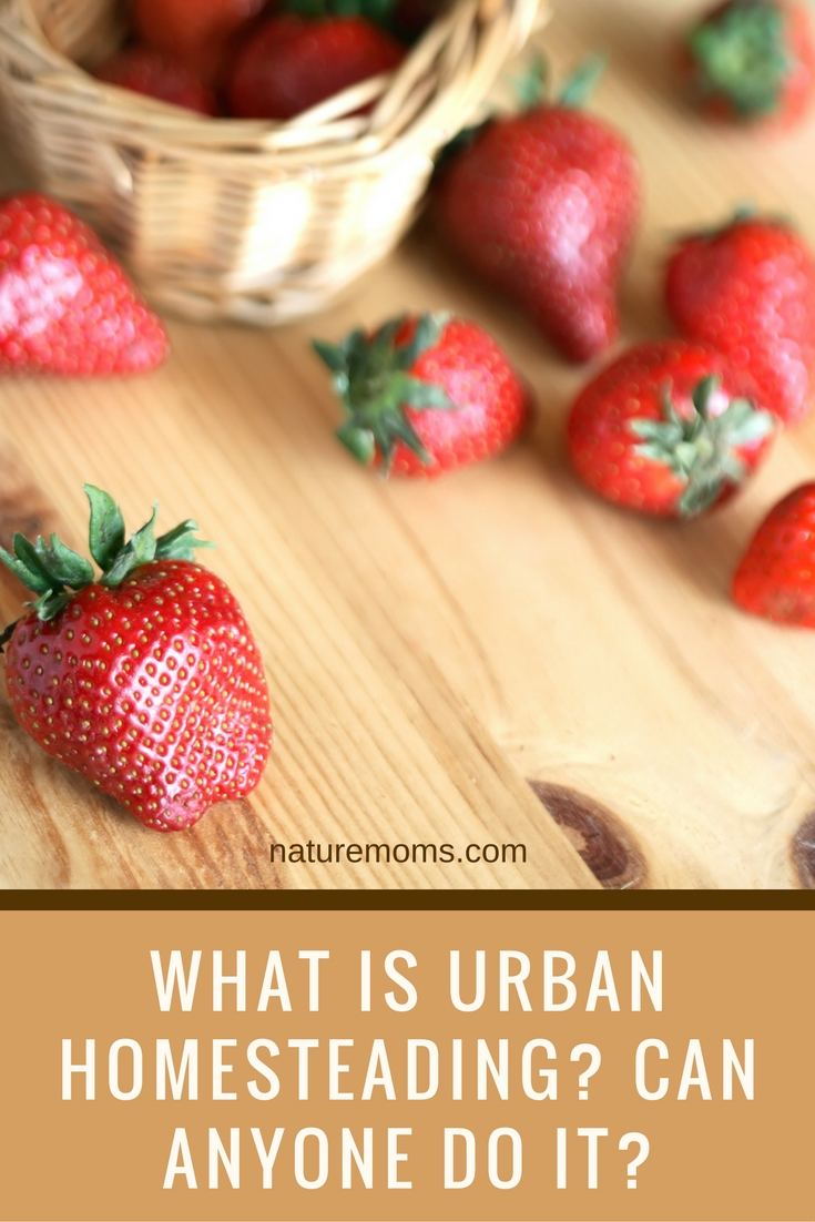 What is Urban Homesteading