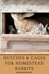 Hutches and Cages for Rabbits
