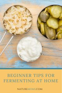 Beginner Tips for Fermenting