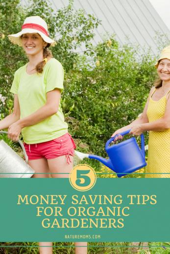Money saving tips for gardeners